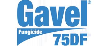 Gavel<Sup>®</Sup> 75DF