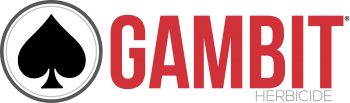 Gambit®